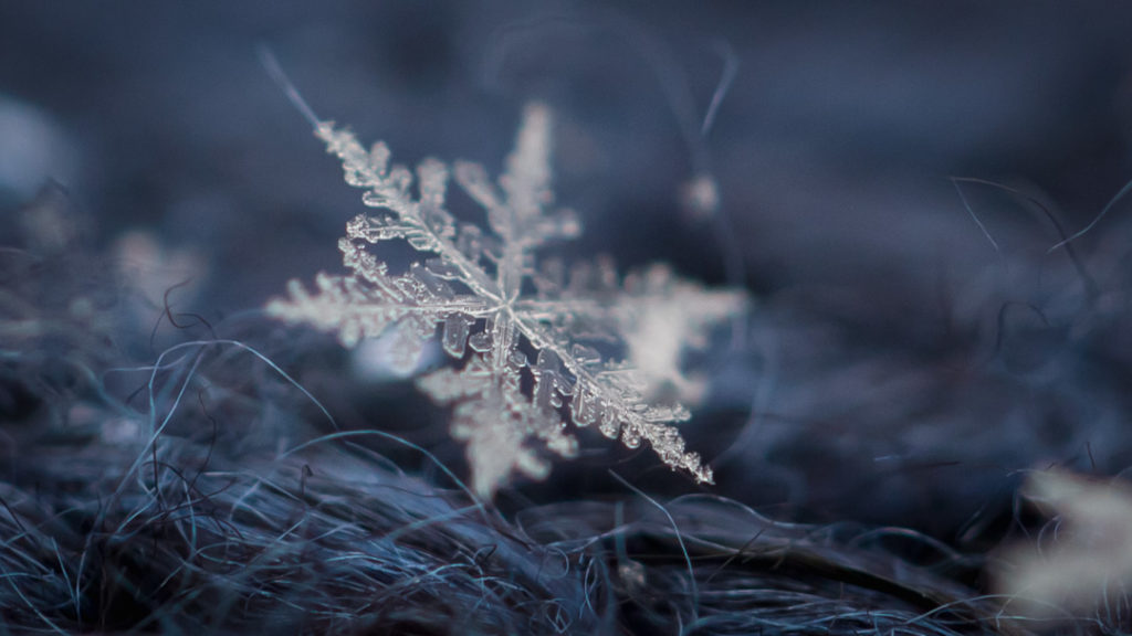 how to photograph snowflakes with a macro lens  u2013 mostly